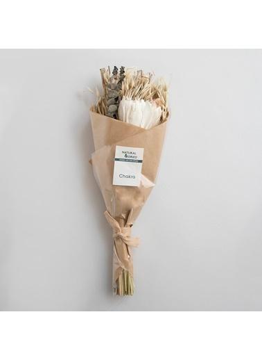 Chakra Sola Long Çiçek Buketi 40 cm Natural Kahve